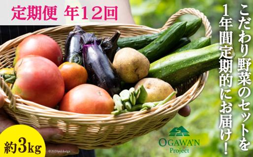 No.138 OGAWA'N 野菜セットの定期便(年12回)