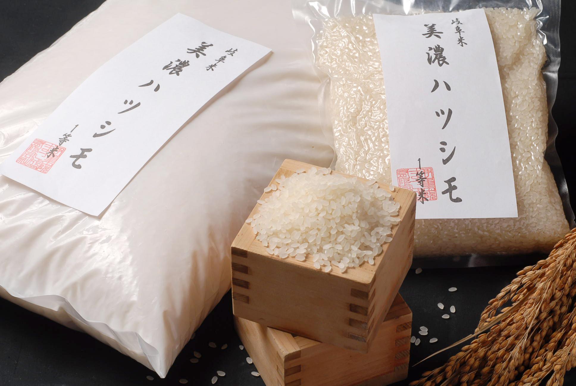 美濃ハツシモ 1等米8㎏(2㎏×4袋)
