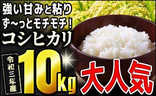 TB0-66【先行予約】モチモチ食感っ令和3年産【コシヒカリ】10kg!!