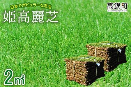 <姫高麗芝 2平方メートル>2か月以内に順次出荷【c591_hg】