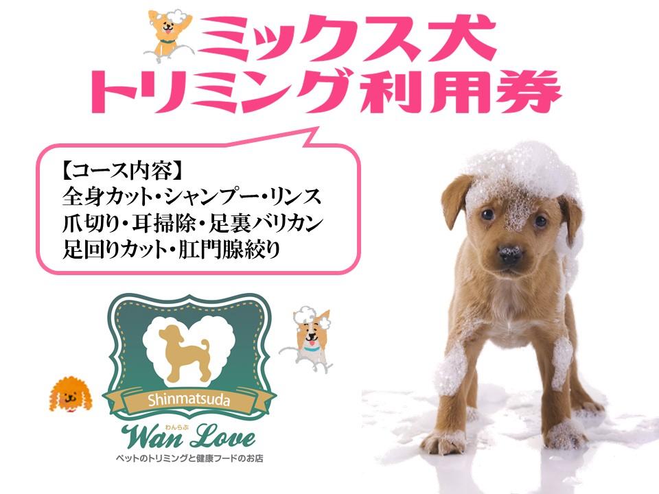 【ミックス犬】トリミング利用券(1回)