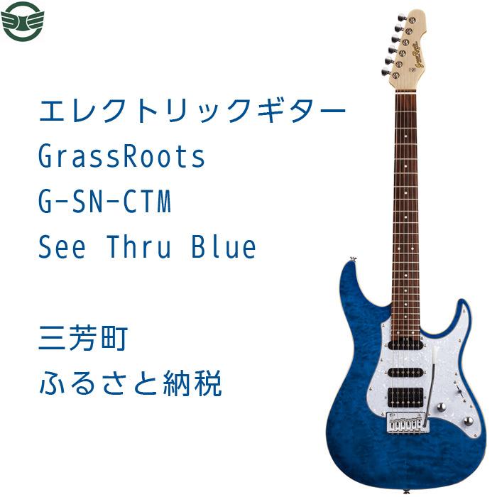 【ふるさと納税】エレクトリックギター G-SN-CTM See Thru Blue