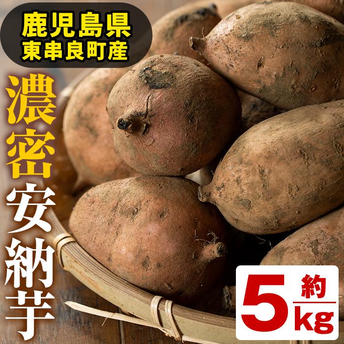 【10543】鹿児島県東串良町産の濃密安納芋(約5kg)【甘宮】