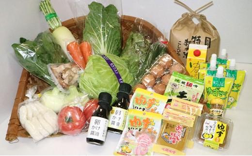 [№5557-0017]新鮮野菜と特産品セット
