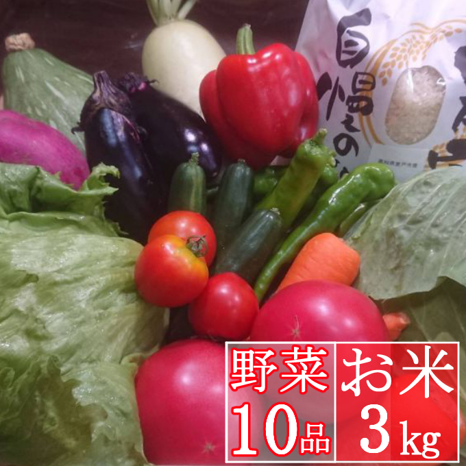RK082お米3kgと旬野菜10品セット