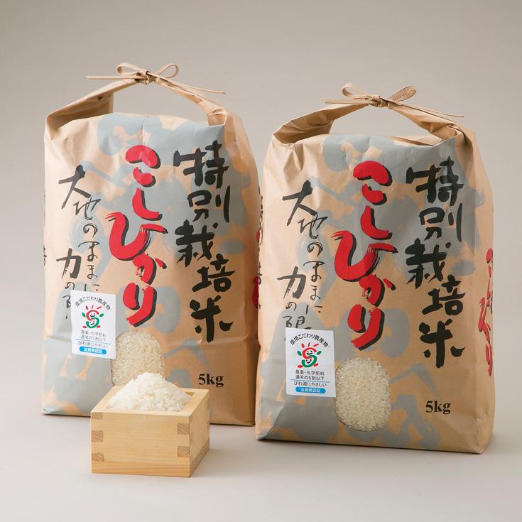 よこいファーム 特別栽培米コシヒカリA