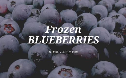 10-90 築上町産冷凍ブルーベリー 1kg