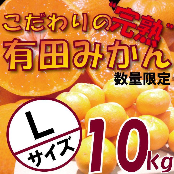 CC6110_\農家直送/完熟有田みかんLサイズ 約10kg 有機質肥料100%   ※沖縄及び離島は配送不可