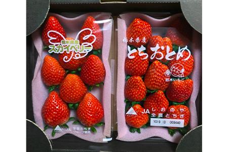【2609-0148】【うんめ~あんめ~】いちご王国栃木のとちおとめとスカイベリーの食べ比べセット