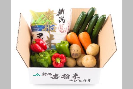 A4031 【令和3年産米】岩船米コシヒカリと季節の野菜セット①