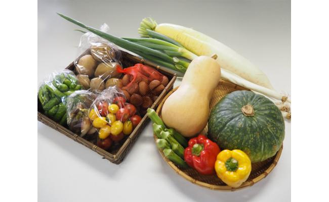 No.002 四街道の厳選地元野菜の詰め合わせ / 季節野菜 旬 詰合せ セット 千葉県 特産品