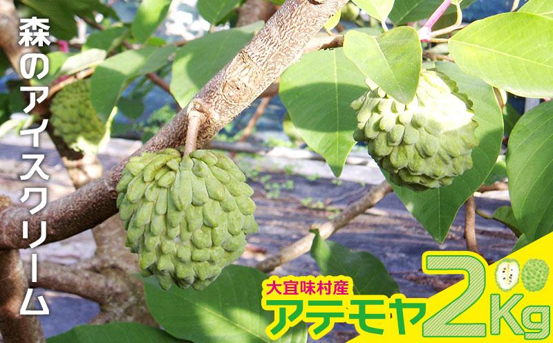 大宜味村産 アテモヤ 2Kg【森のアイスクリーム】