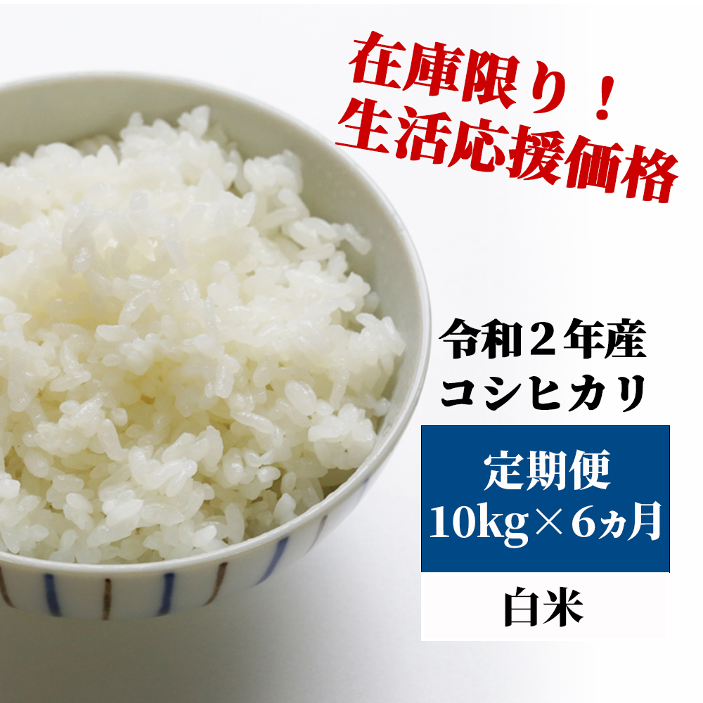 <令和2年産>K22定期便 あわくら源流米 コシヒカリ 白米10kg×6