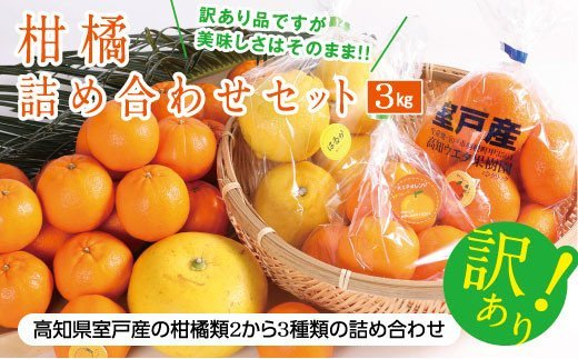 RK068【訳あり】柑橘詰め合わせセット(約3kg)