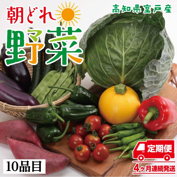 RK054朝どれ野菜10品目【4ヶ月連続定期便】~新型コロナ支援