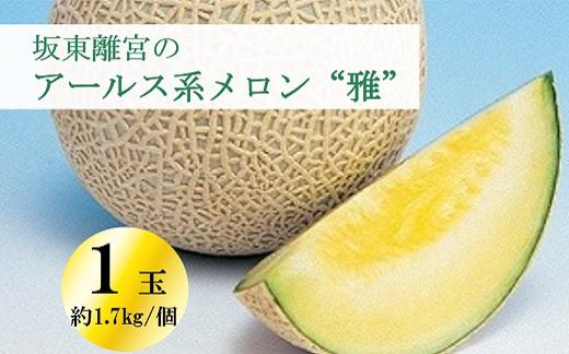 "K1752 【数量限定】坂東離宮のアールス系メロン""雅"" 1玉"