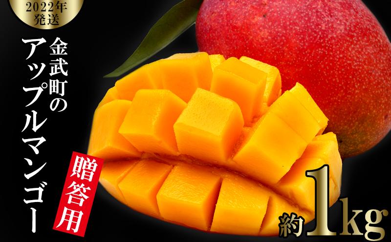 【2022年発送】金武町のアップルマンゴー◆贈答用◆約1kg(2~3玉)