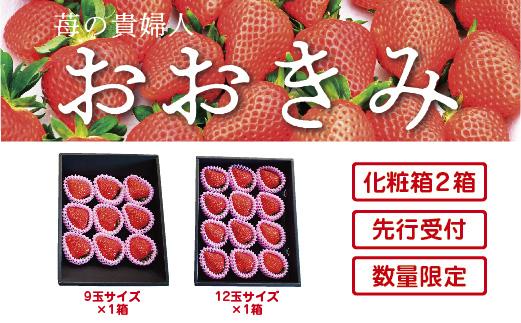 21-774.【先行受付・数量限定】苺の貴婦人おおきみ(化粧箱) 2箱