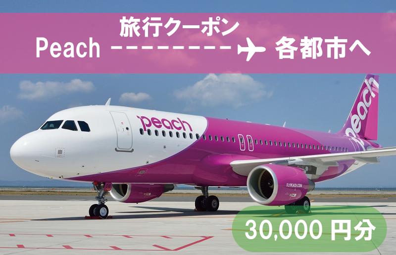 100F019 PeachでGo!!旅行クーポン(30,000円分)