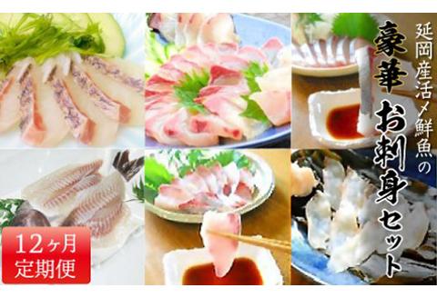 G021 【定期便】延岡産活〆鮮魚の豪華お刺身(12ヶ月)