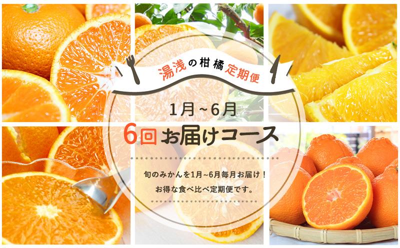 G60-T03_【定期便 6回】湯浅町まるっと柑橘お届けフルーツ定期便(1月~6月お届け)