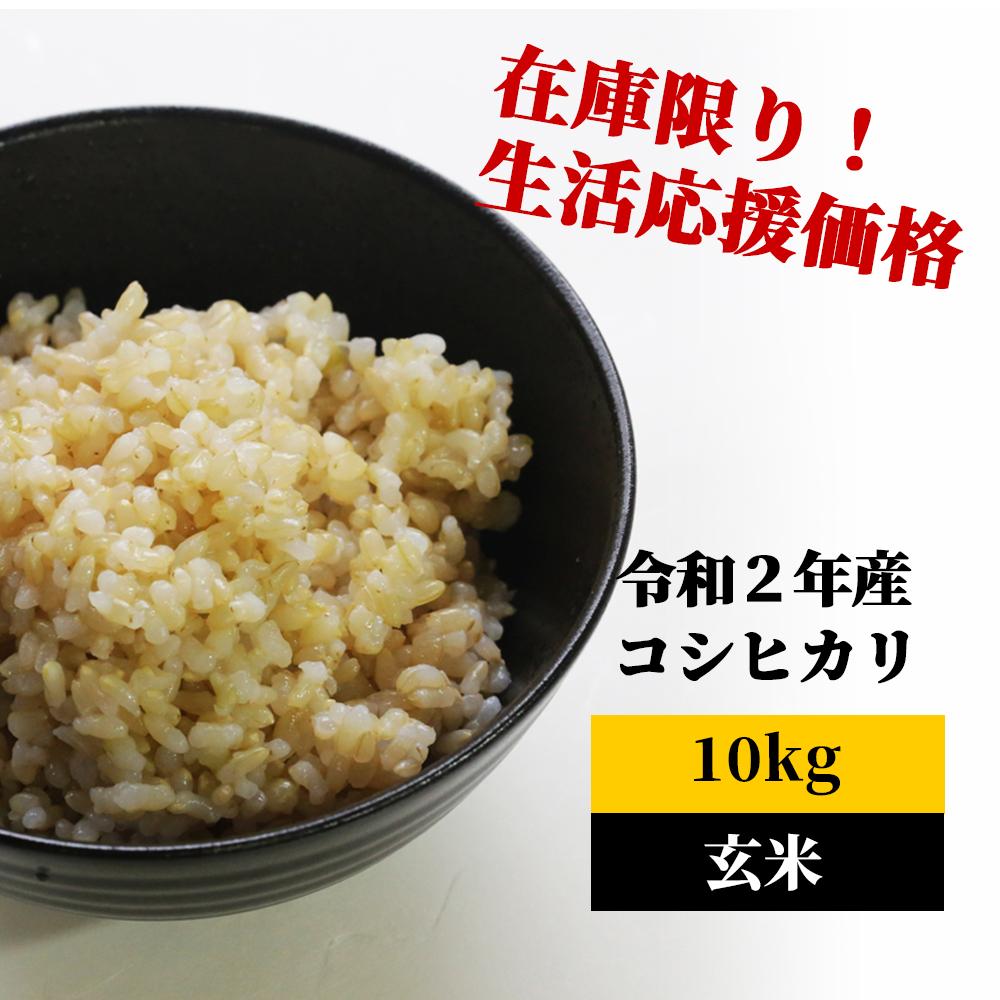 <令和2年産>K8 あわくら源流米 コシヒカリ 玄米10kg