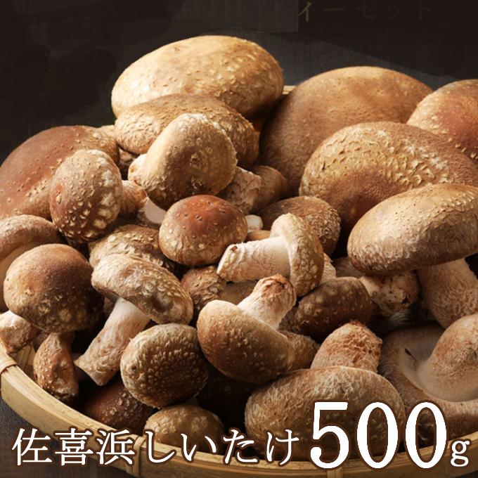 NC007佐喜浜しいたけ【約500g】
