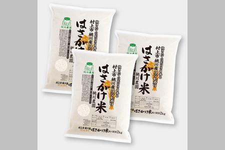 B4040 【令和3年産米】村上市桃川産 特選コシヒカリ はさがけ米6kg