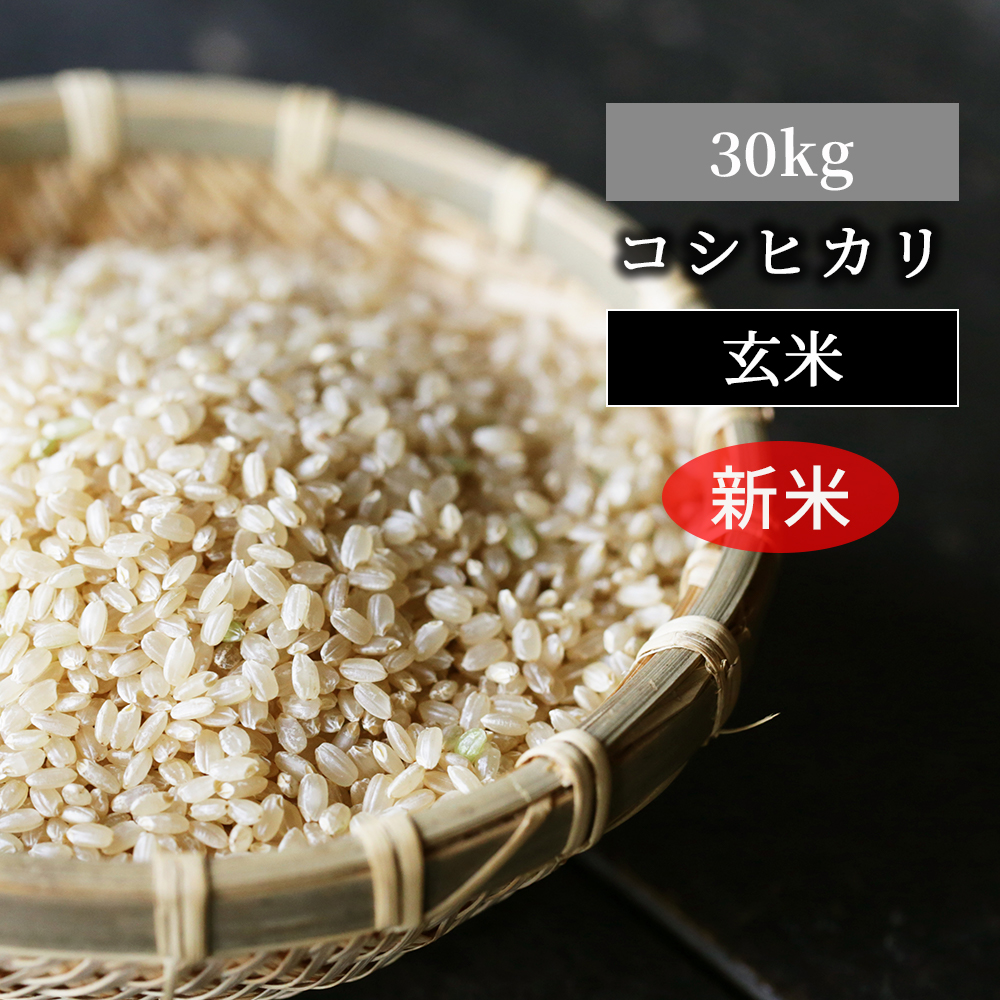<W11 あわくら源流米 コシヒカリ 玄米30kg>