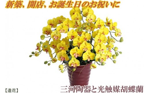 綺麗で丈夫な三河陶器で贈る 光触媒胡蝶蘭(ワインレッドの陶器×黄色の花) H100-006