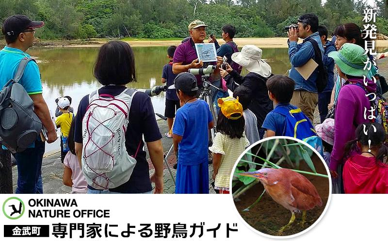 新発見がいっぱい! 金武町 専門家による野鳥ガイド