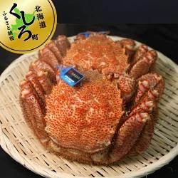 121-1082-17 北海道 昆布森の毛蟹 (2~3尾/合計1kg)<出荷時期:2021年10月ごろ発送予定>