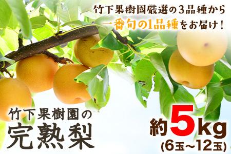 竹下果樹園の完熟梨 (あきづき・甘太・新高) 約5kg (6~12玉)《9月上旬-10月中旬頃より順次出荷》