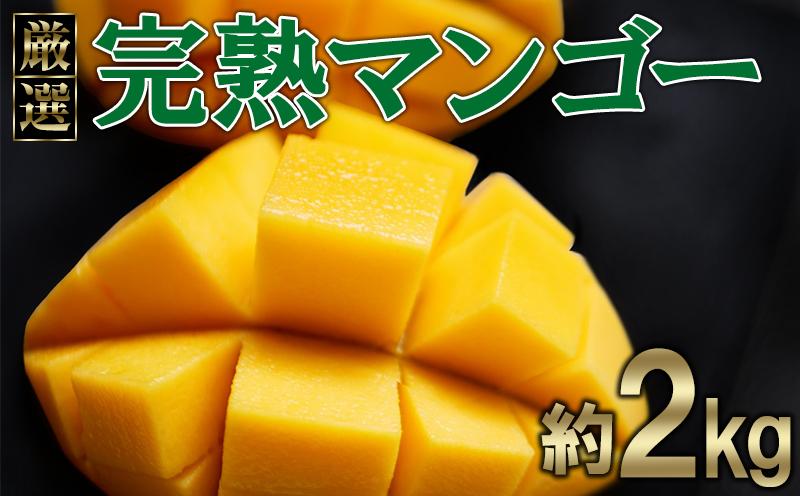 【ヤエセフーズ】厳選!完熟マンゴー約2kg