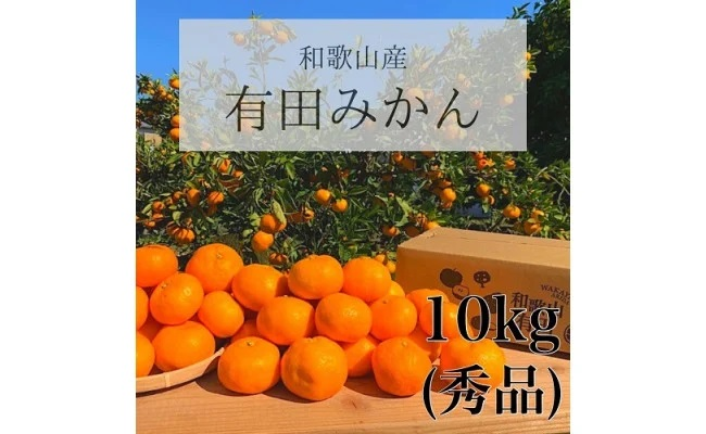 BL6003_【産地直送】和歌山県産有田みかん 10kg