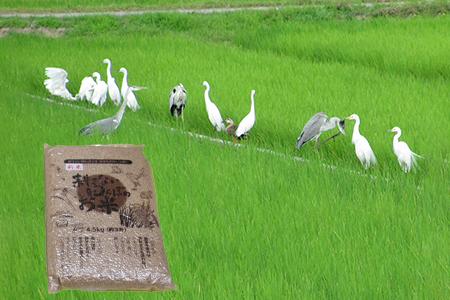【2622-0123】【新米】【定期便】(6か月連続お届け)無農薬栽培 コシヒカリ 玄米【2021年9月中旬以降配送】