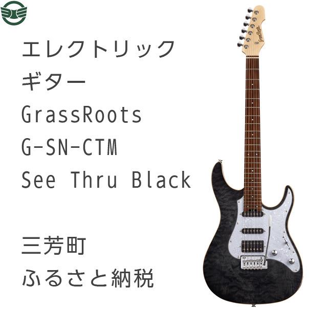 【ふるさと納税】エレクトリックギター G-SN-CTM See Thru Black