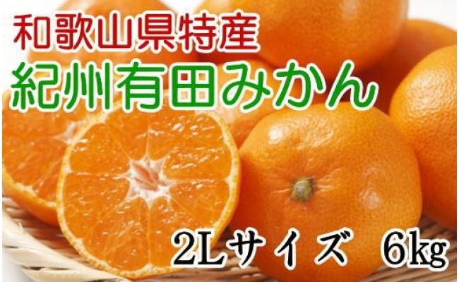 ZD6101_【厳選】紀州有田みかん 6kg(2Lサイズ・赤秀)【数量限定】