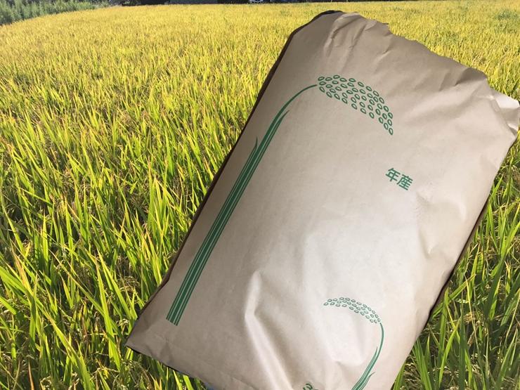 19-0022 新米 令和3年度産 玄米(さとじまん)30kg <出荷時期:2021年10月下旬~>【 神奈川県 海老名市 】