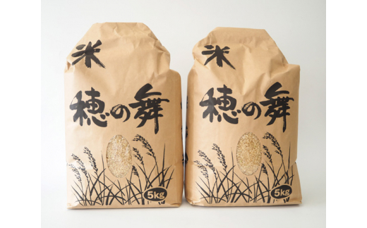 No.076 四街道の厳選うるち玄米(こしひかり)10kg / お米 コシヒカリ 千葉県 特産品