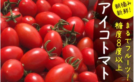 【完熟ミニトマト】アイコトマト_約1kg