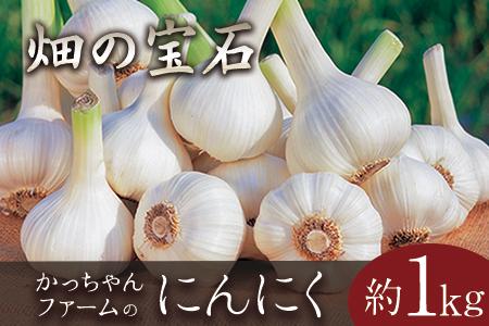 熊本県玉東町産『かっちゃんファーム』のにんにく 約1kg《6月上旬-8月中旬頃より順次出荷》