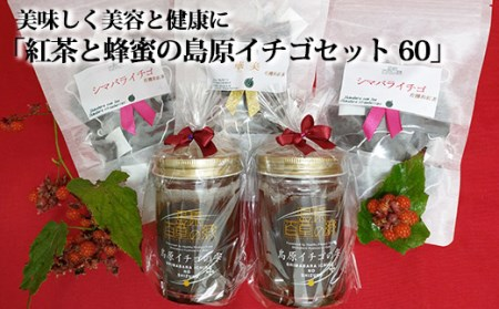 BC037美味しく美容と健康に「紅茶と蜂蜜の島原イチゴセット 60」