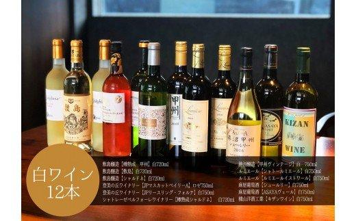白ワイン 飲み比べ12本セット A Presents by Katerial