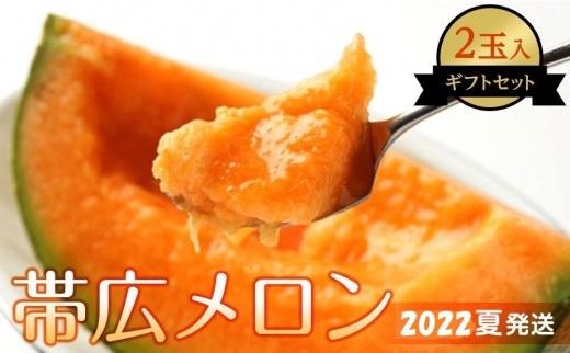 【先行予約】帯広メロン2玉(2022年8月上旬発送予定)