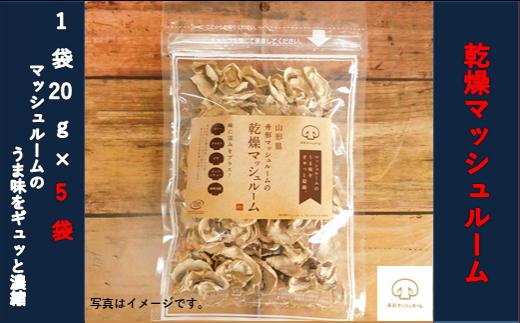 【舟形マッシュルーム】乾燥マッシュルーム 5袋