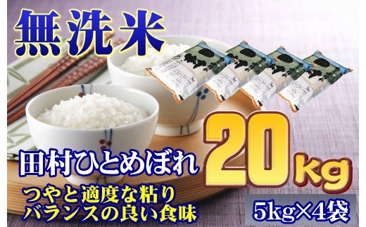 TC4-10【無洗米】田村市産ひとめぼれ20㎏(5㎏×4袋)【令和2年産】