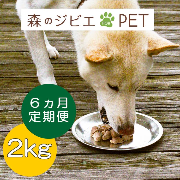 A74定期便 森のジビエ for PET 鹿肉  2kg×6