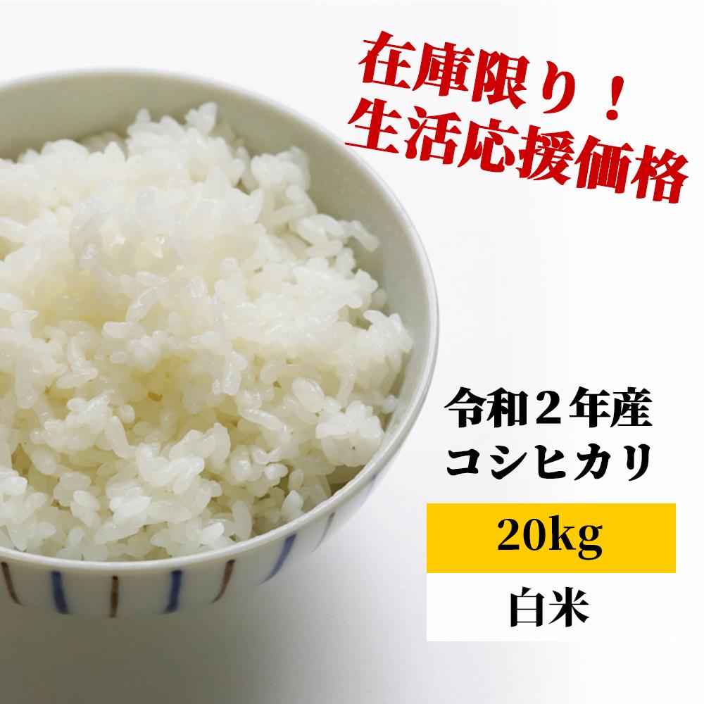 <令和2年産>K29 あわくら源流米 コシヒカリ 白米20kg