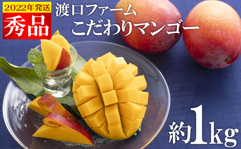 【2022年発送】渡口ファームのこだわりマンゴー約1kg〈秀品〉